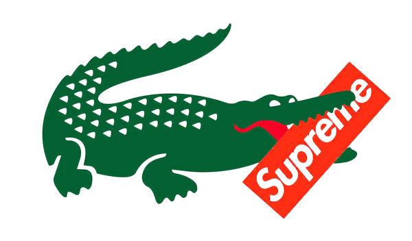 supreme-lacoste-联名1.jpg
