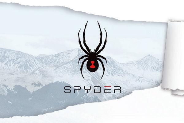 蜘蛛logo奢侈品牌.jpg