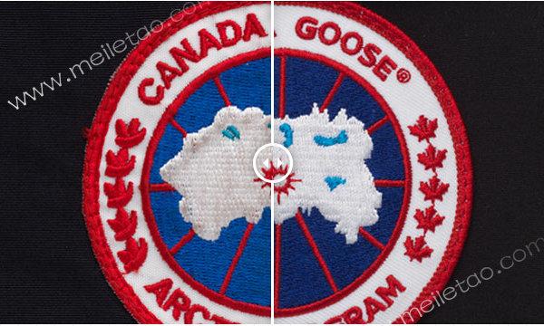 加拿大鹅真假.jpg